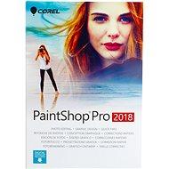 PaintShop Pro 2018 pre jedného užívateľa - Grafický softvér