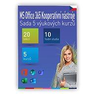 GOPAS MS Office 365, Teams – Sada 5 výučbových kurzov CZ (elektronická licencia) - Vzdelávací program