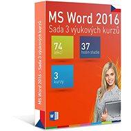 GOPAS MS Word 2016 – 3 samoštudijné výukové kurzy na 365 dní CZ (elektronická licencia) - Elektronická licencia