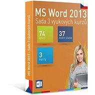 GOPAS MS Word 2013 – 3 samoštudijné výukové kurzy na 365 dní CZ (elektronická licencia) - Elektronická licencia