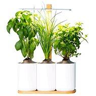 Pret a Pousser Lilo UE - Inteligentný kvetináč