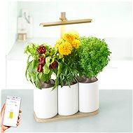 Pret a Pousser Lilo Edition - Inteligentný kvetináč