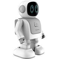 Topjoy Dance Robert Grey - Robot