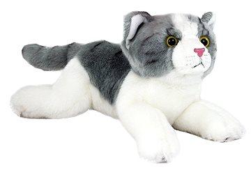 Veľká mačička video.com
