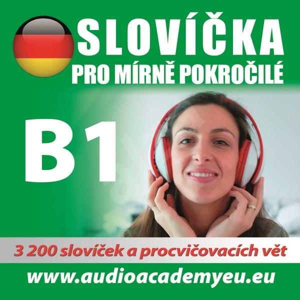Němčina - slovíčka B1 - kolektiv autorů