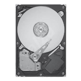 Seagate Barracuda 7200.12 160GB - Pevný disk