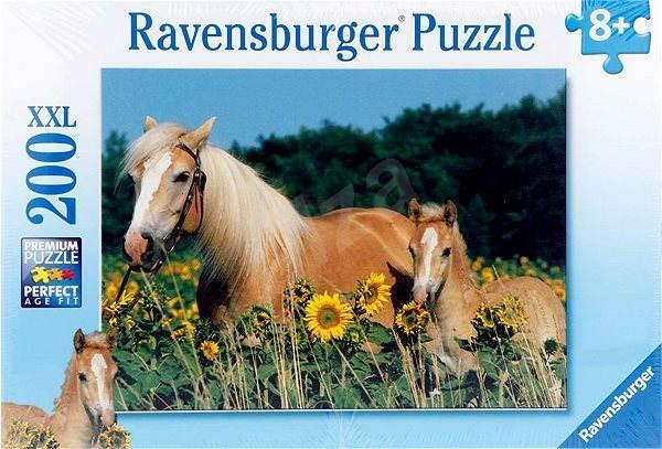 Kone na lúke - Puzzle