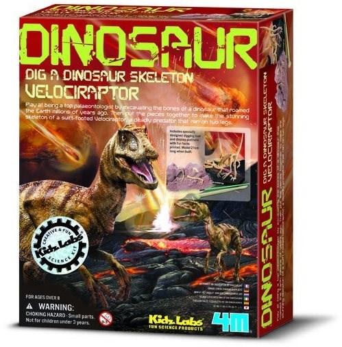 Kostra dinosaura – velociraptor - Experimentálna súprava