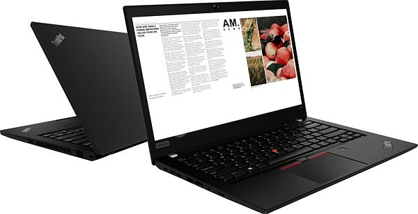Lenovo ThinkPad T490 - Notebook